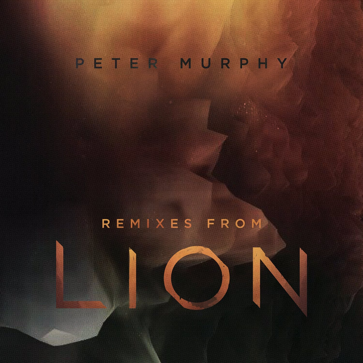 Remixes From Lion (Ed. Lda)